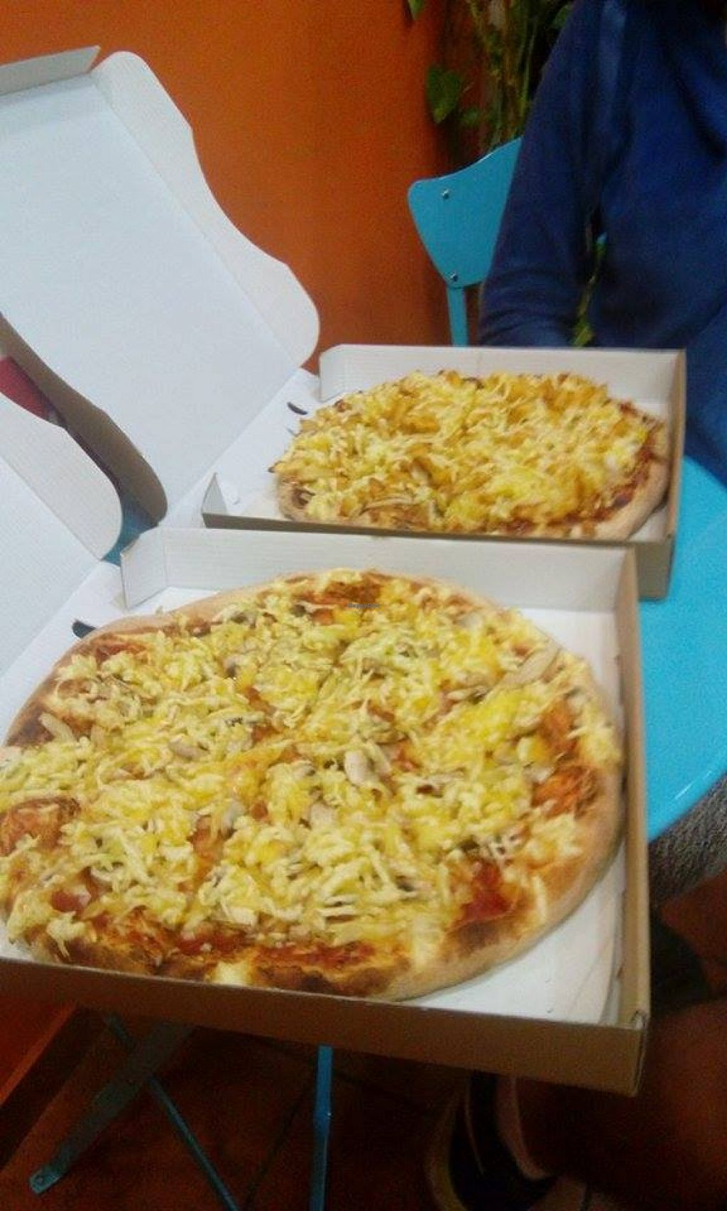 """Photo of Pizza Bite  by <a href=""""/members/profile/TytoAlba"""">TytoAlba</a> <br/>Vegan pizza  <br/> May 12, 2016  - <a href='/contact/abuse/image/73276/148631'>Report</a>"""