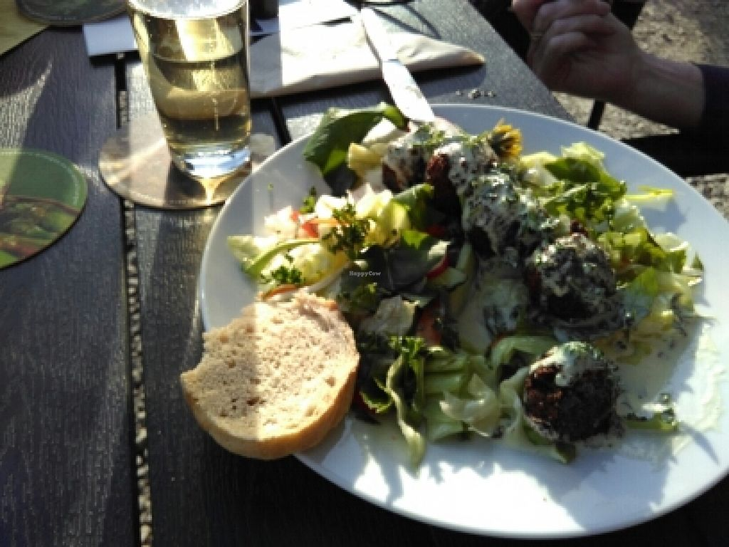 """Photo of VeBistro  by <a href=""""/members/profile/AchimGuldner"""">AchimGuldner</a> <br/>Falafel salad with wild herbes <br/> May 5, 2016  - <a href='/contact/abuse/image/73281/147604'>Report</a>"""