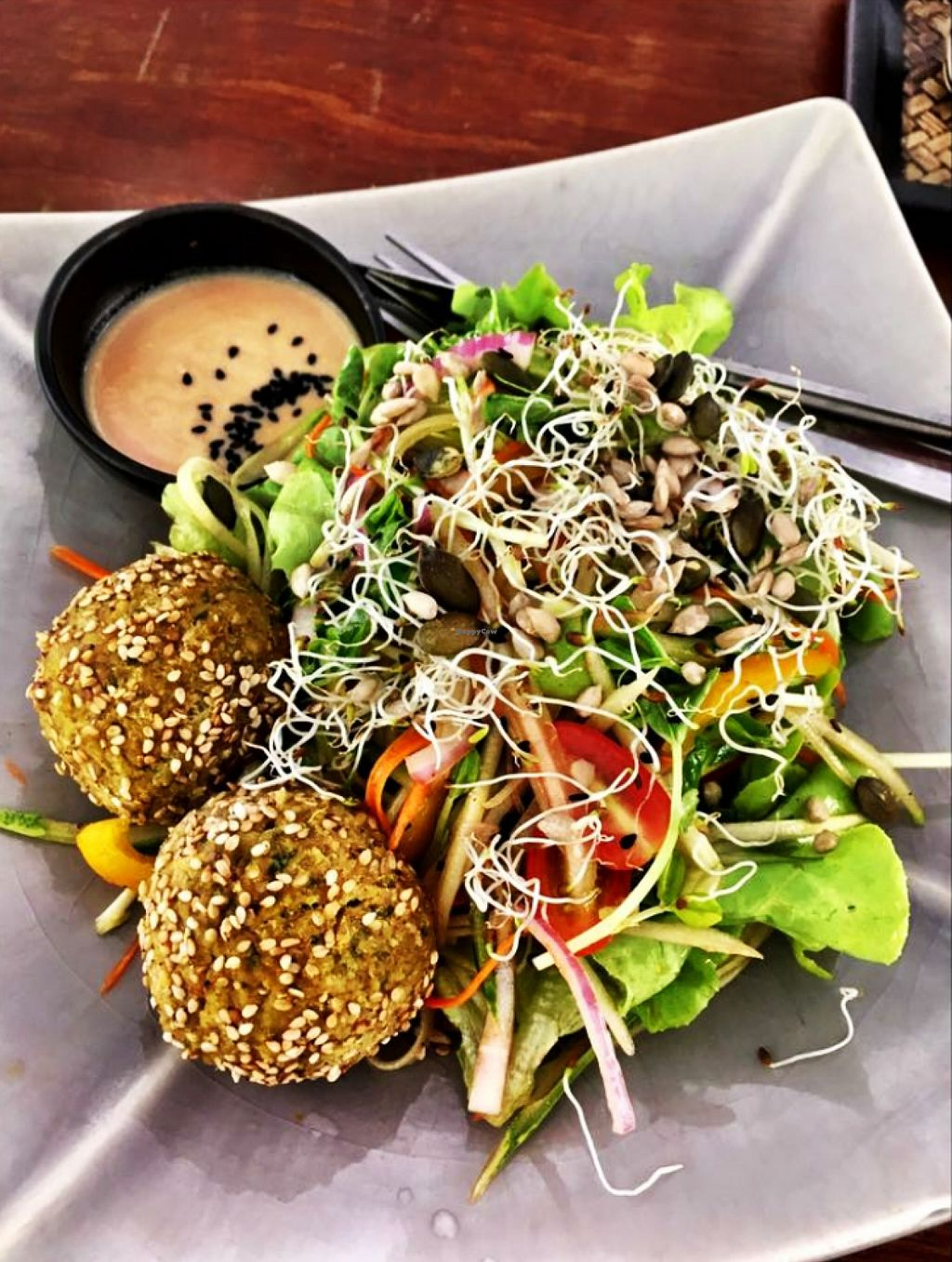 """Photo of Greenlight Cafe & Bar  by <a href=""""/members/profile/Greenlight%20Cafe"""">Greenlight Cafe</a> <br/>Falafel Salad <br/> May 7, 2016  - <a href='/contact/abuse/image/73356/147977'>Report</a>"""