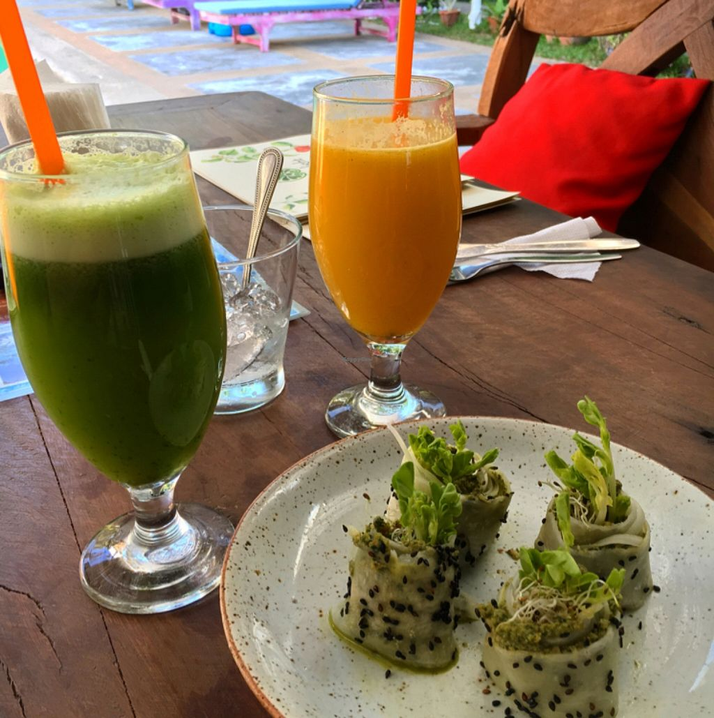 """Photo of Greenlight Cafe & Bar  by <a href=""""/members/profile/SeitanSeitanSeitan"""">SeitanSeitanSeitan</a> <br/>Fresh juices and daikon pesto rolls <br/> May 8, 2016  - <a href='/contact/abuse/image/73356/148005'>Report</a>"""
