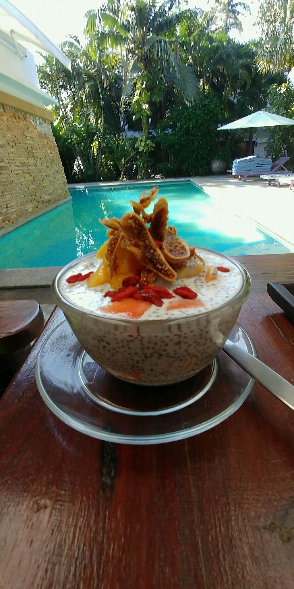 """Photo of Greenlight Cafe & Bar  by <a href=""""/members/profile/queencrosbie"""">queencrosbie</a> <br/>chia pudding <br/> December 13, 2017  - <a href='/contact/abuse/image/73356/335123'>Report</a>"""