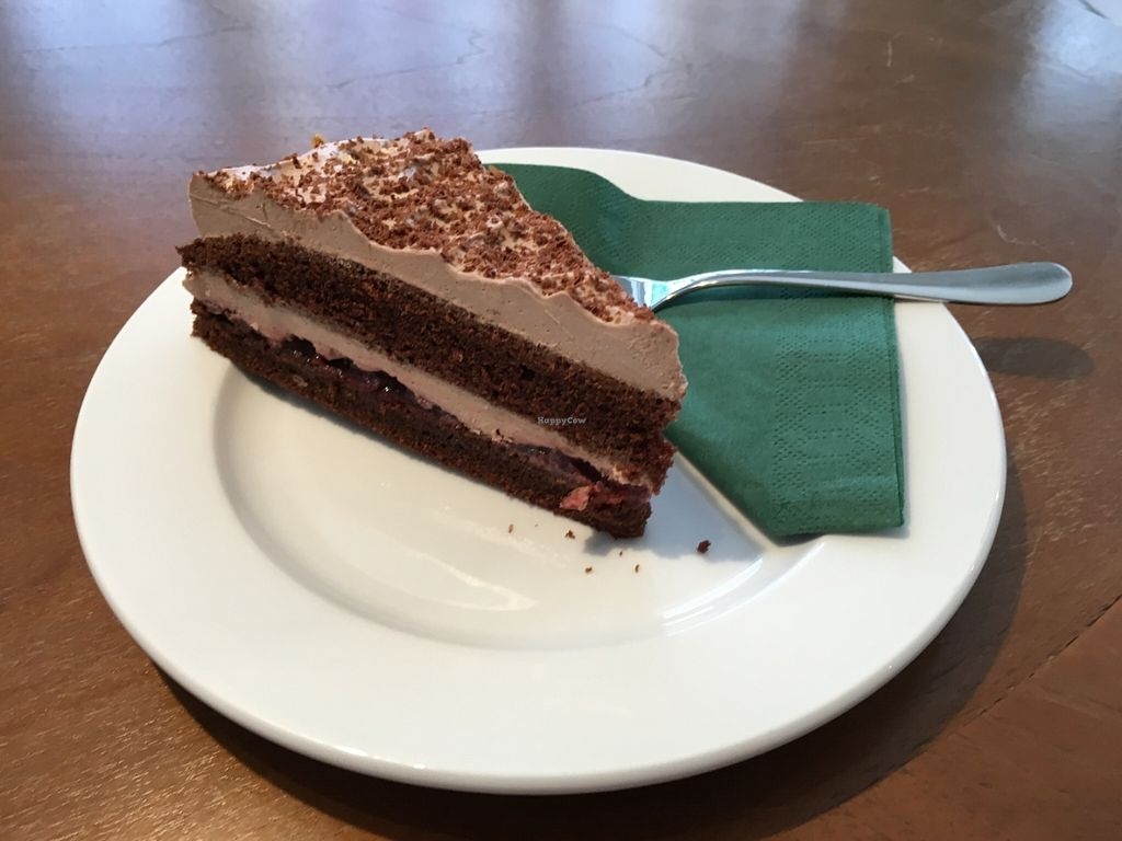 """Photo of CLOSED: Molly & Alf  by <a href=""""/members/profile/simmiefairy"""">simmiefairy</a> <br/>Chocolate cake - the yummiest chocolate cake I've ever tasted! It was so good!! Want another piece or just the whole cake ...  <br/> June 30, 2016  - <a href='/contact/abuse/image/73367/157011'>Report</a>"""