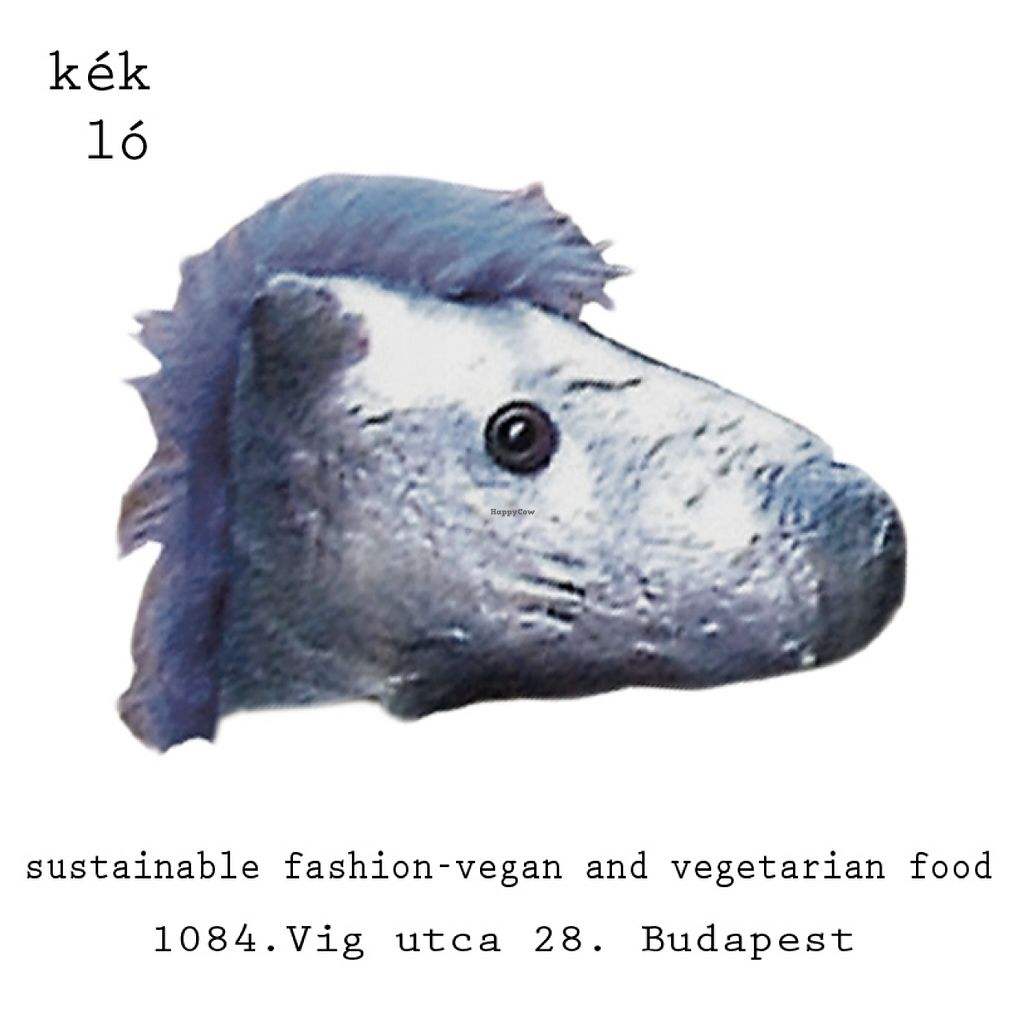 "Photo of Kek Lo Budapest  by <a href=""/members/profile/tvirag"">tvirag</a> <br/>kék ló means blue horse in hungarian <br/> May 8, 2016  - <a href='/contact/abuse/image/73373/147997'>Report</a>"