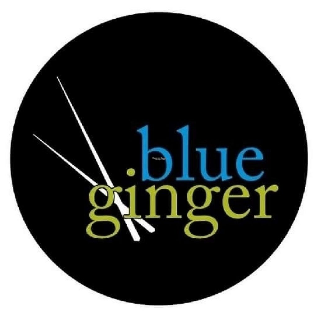 """Photo of Blue Ginger  by <a href=""""/members/profile/community"""">community</a> <br/>logo  <br/> February 15, 2017  - <a href='/contact/abuse/image/73497/227003'>Report</a>"""