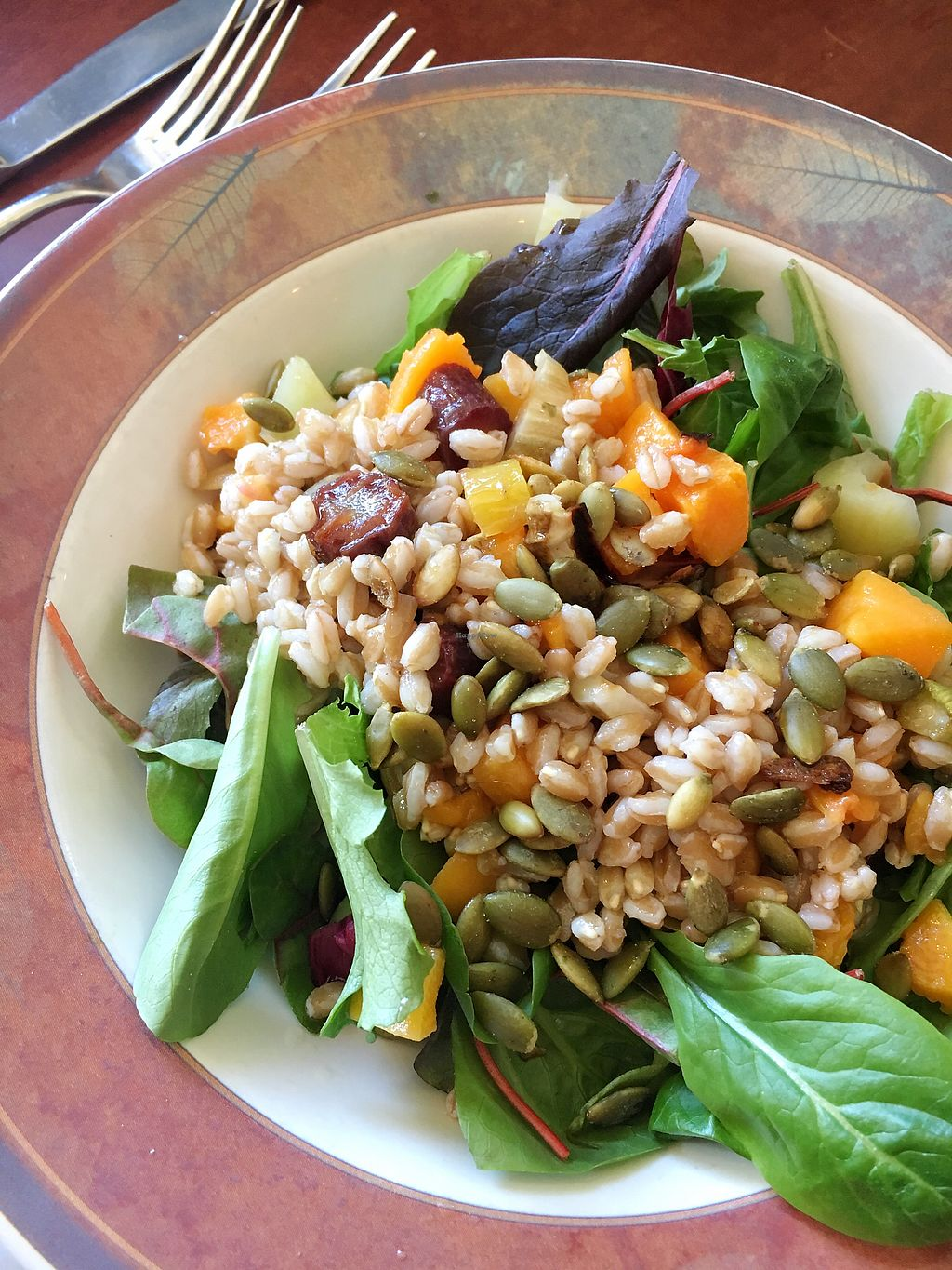 """Photo of Locavore Bistro  by <a href=""""/members/profile/remyelysee"""">remyelysee</a> <br/>Squash Salad <br/> March 17, 2018  - <a href='/contact/abuse/image/73564/371880'>Report</a>"""