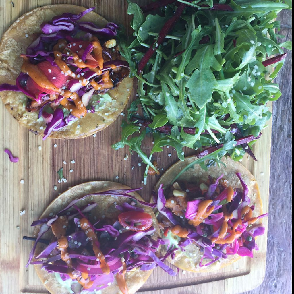 """Photo of EVE  by <a href=""""/members/profile/BohemianVeganGypsy"""">BohemianVeganGypsy</a> <br/>jackfruit tacos ????? <br/> March 30, 2017  - <a href='/contact/abuse/image/73584/242531'>Report</a>"""