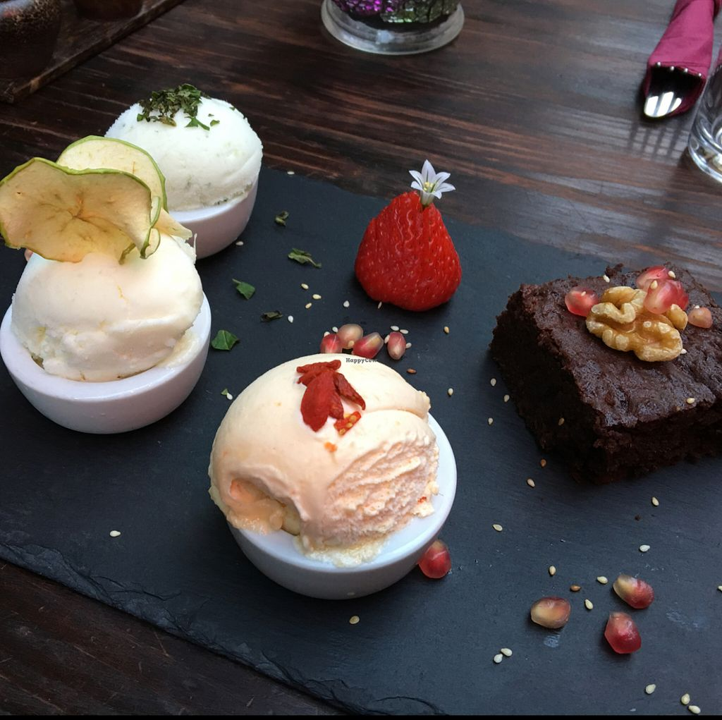"""Photo of CLOSED: Amala Conscious Food  by <a href=""""/members/profile/Danielwagner"""">Danielwagner</a> <br/>gluten free vegan peanut and walnut brownie with a selection of vegan ice teams  <br/> May 28, 2016  - <a href='/contact/abuse/image/73611/151219'>Report</a>"""