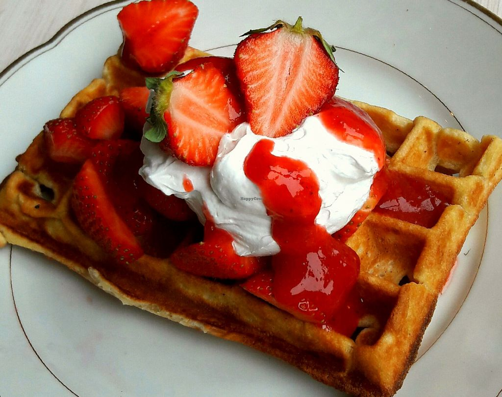 """Photo of Cafe Neue Liebe  by <a href=""""/members/profile/LieschenvanMueller"""">LieschenvanMueller</a> <br/>vegan belgien waffle with strawberrys and vegan cream <br/> July 16, 2016  - <a href='/contact/abuse/image/73735/160313'>Report</a>"""