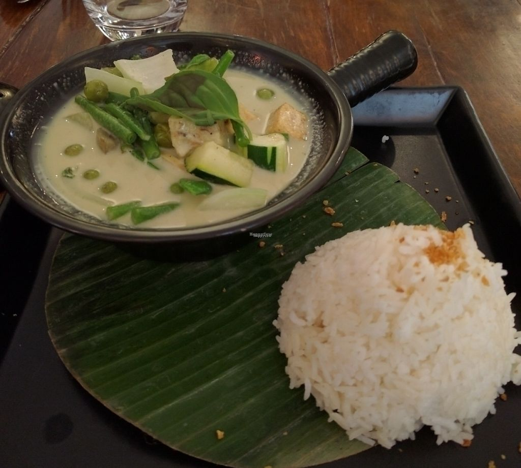 """Photo of Green Buddha  by <a href=""""/members/profile/TobiasLeenaert"""">TobiasLeenaert</a> <br/>green curry with tofu  <br/> October 21, 2016  - <a href='/contact/abuse/image/73780/243596'>Report</a>"""