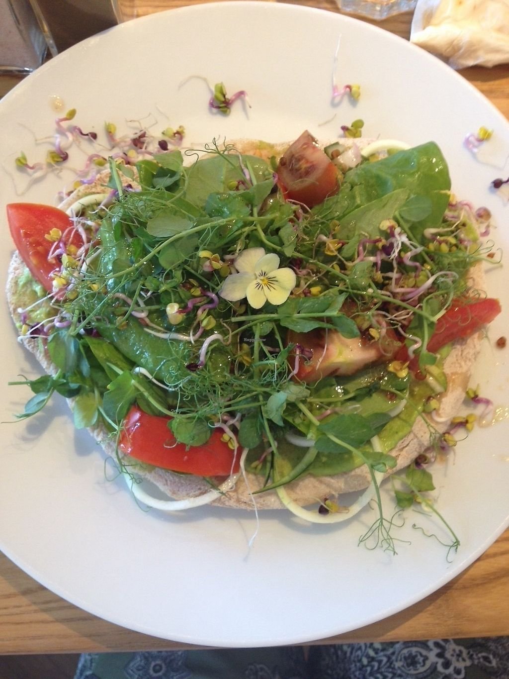 """Photo of Earthlings  by <a href=""""/members/profile/CoralS"""">CoralS</a> <br/>Flatbread special with pea houmous, salad, sprouting seeds and rose and pomegranate dressing.  <br/> June 17, 2017  - <a href='/contact/abuse/image/73798/270095'>Report</a>"""