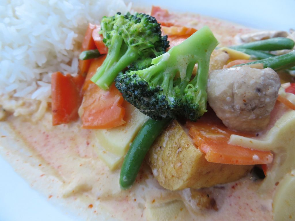 "Photo of Asia Wok  by <a href=""/members/profile/VegiAnna"">VegiAnna</a> <br/>no. 271: Fried tofu with red curry, coconut milk, vegetables, and rice <br/> July 2, 2016  - <a href='/contact/abuse/image/73851/157262'>Report</a>"