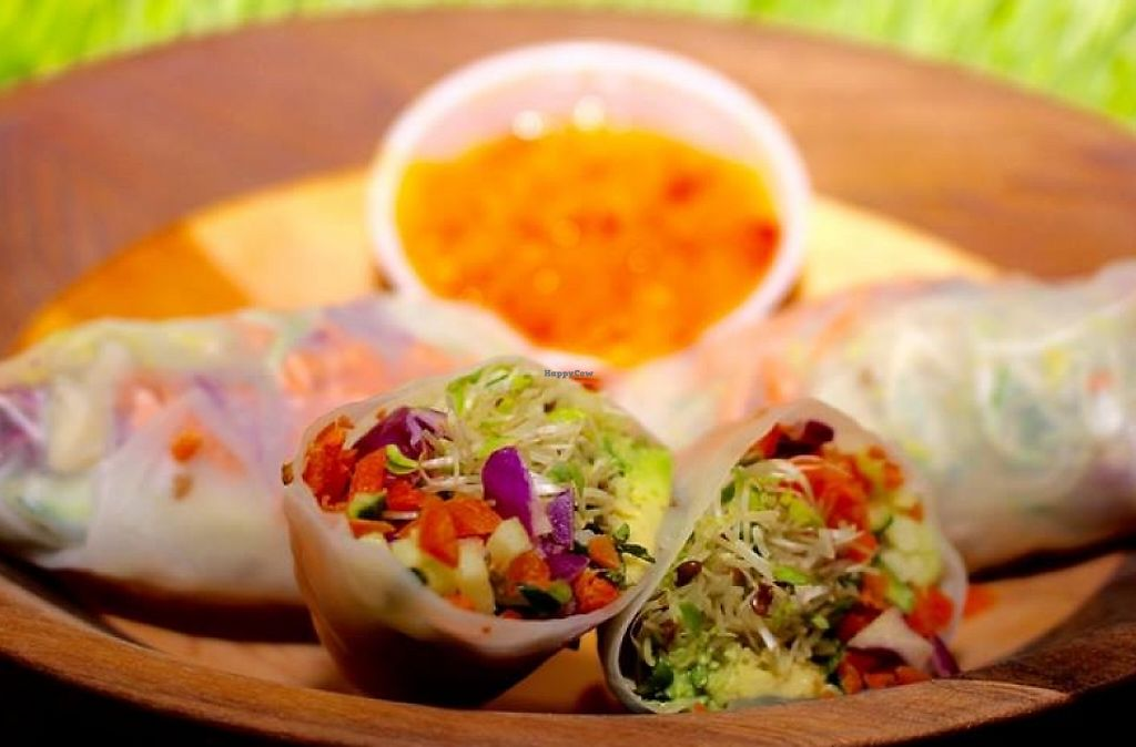 """Photo of Living Waters Health Food Store and Organic Cafe  by <a href=""""/members/profile/community"""">community</a> <br/>spring rolls  <br/> May 29, 2016  - <a href='/contact/abuse/image/73886/197451'>Report</a>"""
