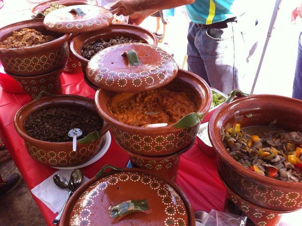Photo of Sabor Vegano - Food Booth  by Sabor Vegano Mexico <br/>Asada | Pastor | Alambre | Mole de cacahuate | Chilorio | Chicharrón de avena | Entomatado | Barbacoa de setas | Rajas con crema de tofu | Picadillo y más <br/> May 23, 2016  - <a href='/contact/abuse/image/74127/150524'>Report</a>
