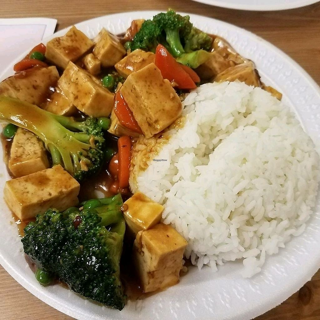 "Photo of Sun Tong Luck Asian Cuisine  by <a href=""/members/profile/Silly%20Little%20Vegan"">Silly Little Vegan</a> <br/>Ma Po Tofu <br/> November 5, 2017  - <a href='/contact/abuse/image/7417/321859'>Report</a>"
