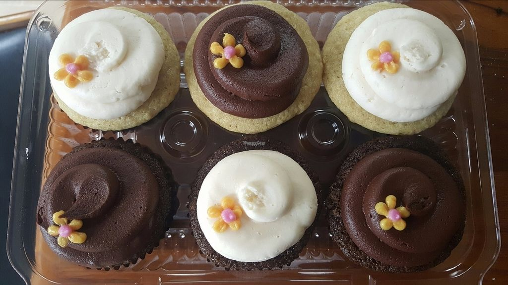 """Photo of The FaRmily Bakery  by <a href=""""/members/profile/SweetpeasVeganBakery"""">SweetpeasVeganBakery</a> <br/>Mixed Chocolate & Vanilla Cupcakes <br/> September 16, 2016  - <a href='/contact/abuse/image/74192/176123'>Report</a>"""