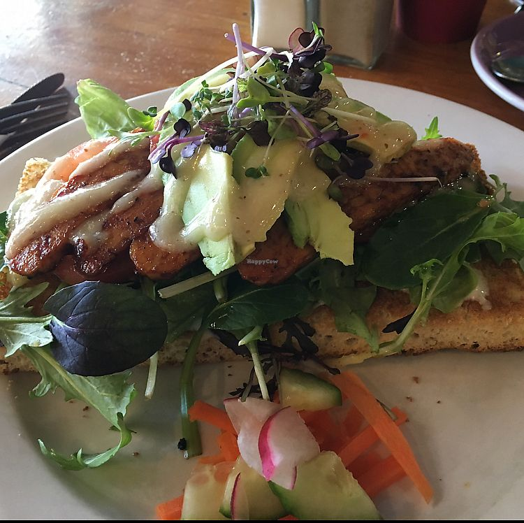 """Photo of Whispers Cafe  by <a href=""""/members/profile/Yolanda"""">Yolanda</a> <br/>tempeh lettuce avocado tomato sandwich  <br/> July 15, 2017  - <a href='/contact/abuse/image/74234/280505'>Report</a>"""