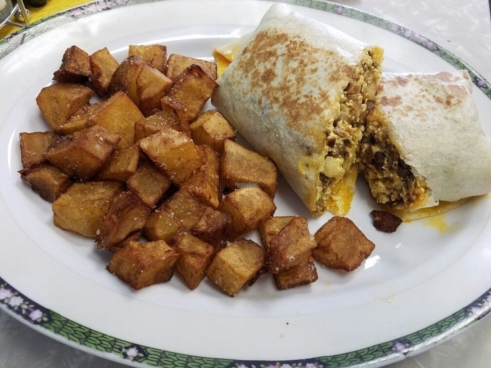 """Photo of The Tasty  by <a href=""""/members/profile/Silly%20Little%20Vegan"""">Silly Little Vegan</a> <br/>Breakfast Burrito <br/> September 26, 2016  - <a href='/contact/abuse/image/74254/178045'>Report</a>"""