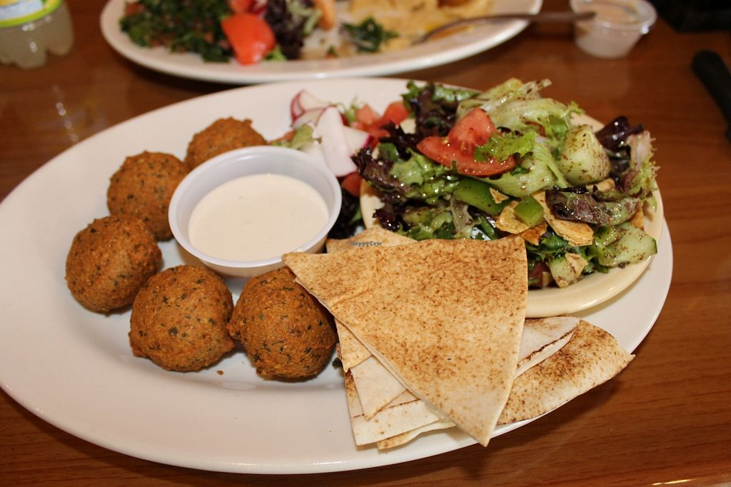 "Photo of Pita Plate  by <a href=""/members/profile/JennyElizabeth"">JennyElizabeth</a> <br/>Falafel Entree. {Vegan} <br/> May 26, 2016  - <a href='/contact/abuse/image/74263/150926'>Report</a>"