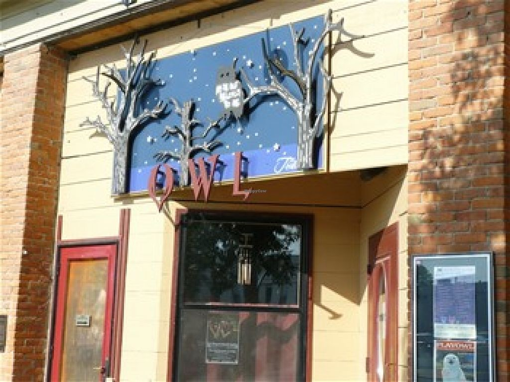 """Photo of Owl Acoustic Lounge  by <a href=""""/members/profile/hilary.williams"""">hilary.williams</a> <br/>The Owl <br/> June 13, 2016  - <a href='/contact/abuse/image/74271/153706'>Report</a>"""