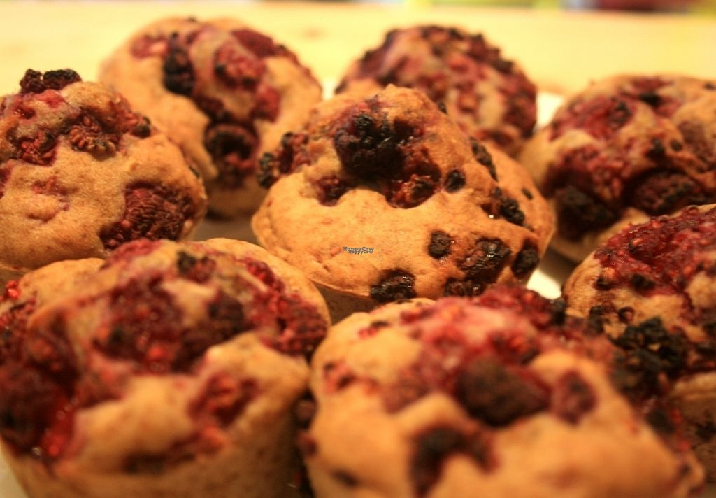 """Photo of CLOSED: Mapache Cafe & Bakery  by <a href=""""/members/profile/Mapachecafe"""">Mapachecafe</a> <br/>Raspberry Gluten-free muffins <br/> October 17, 2016  - <a href='/contact/abuse/image/74390/182669'>Report</a>"""