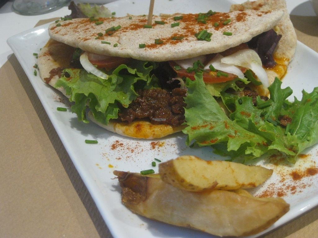 """Photo of Nomit  by <a href=""""/members/profile/jennyc32"""">jennyc32</a> <br/>Hummus and seitan wrap <br/> August 6, 2016  - <a href='/contact/abuse/image/74396/166202'>Report</a>"""