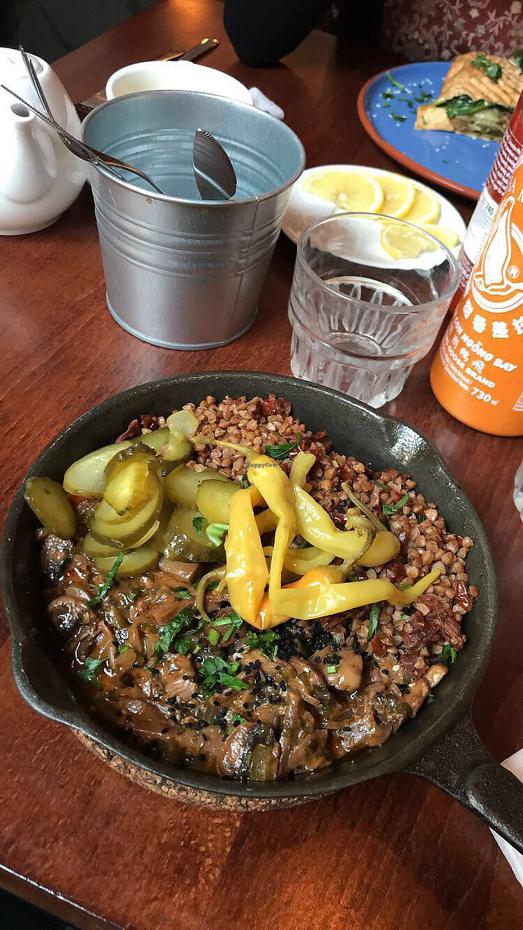 """Photo of Falla  by <a href=""""/members/profile/ailwio"""">ailwio</a> <br/>Vegan stroganoff from the fall mushroom menu ????? <br/> January 14, 2018  - <a href='/contact/abuse/image/74430/346604'>Report</a>"""