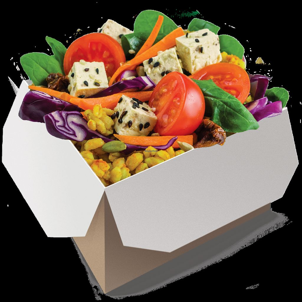"""Photo of Salad Story  by <a href=""""/members/profile/Vera%20Peres"""">Vera Peres</a> <br/>Tofu hot box <br/> July 25, 2016  - <a href='/contact/abuse/image/74460/162136'>Report</a>"""