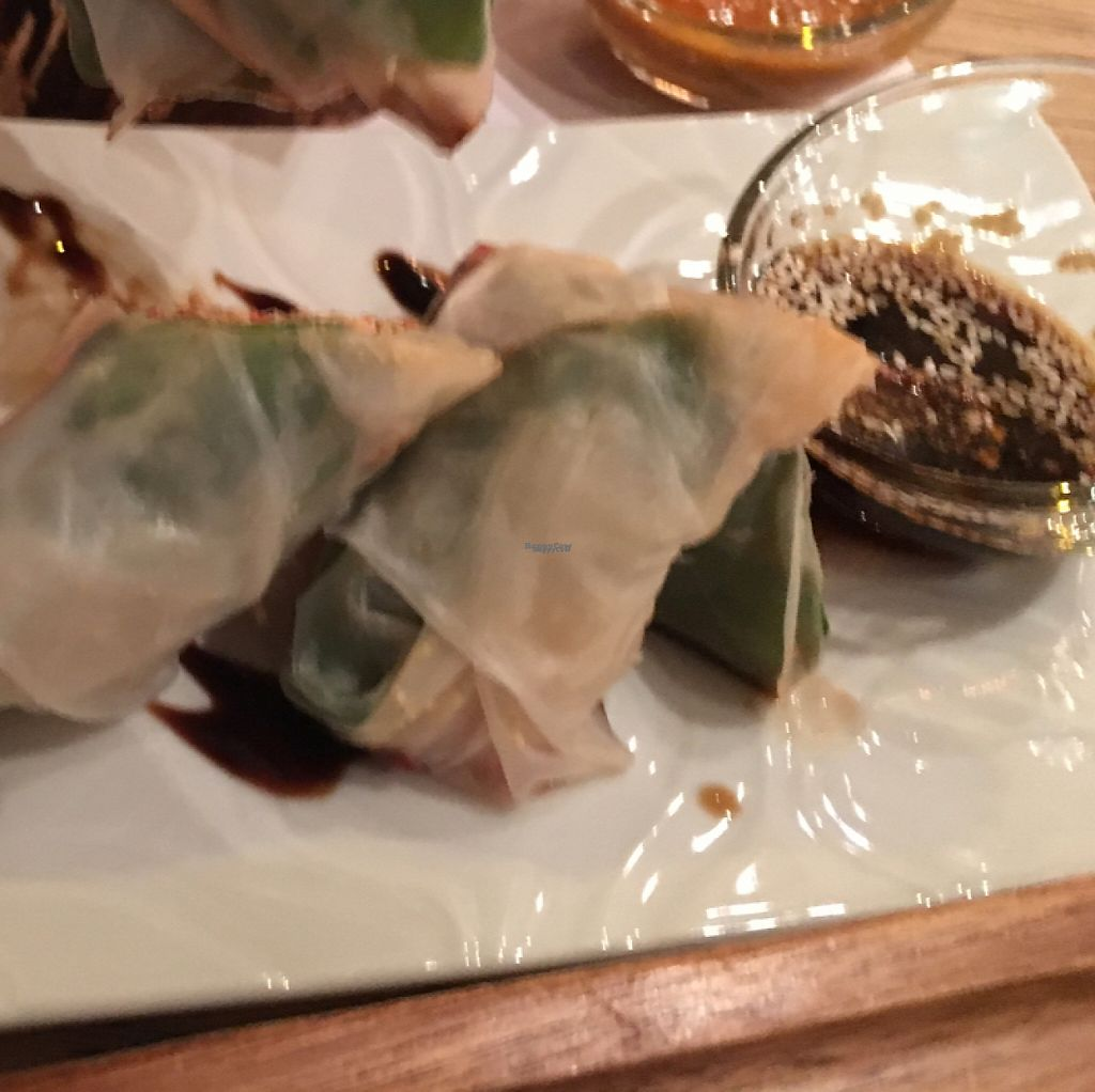 """Photo of True  by <a href=""""/members/profile/PaulLitwin"""">PaulLitwin</a> <br/>the fresh rolls were tasty <br/> April 1, 2017  - <a href='/contact/abuse/image/74550/243450'>Report</a>"""