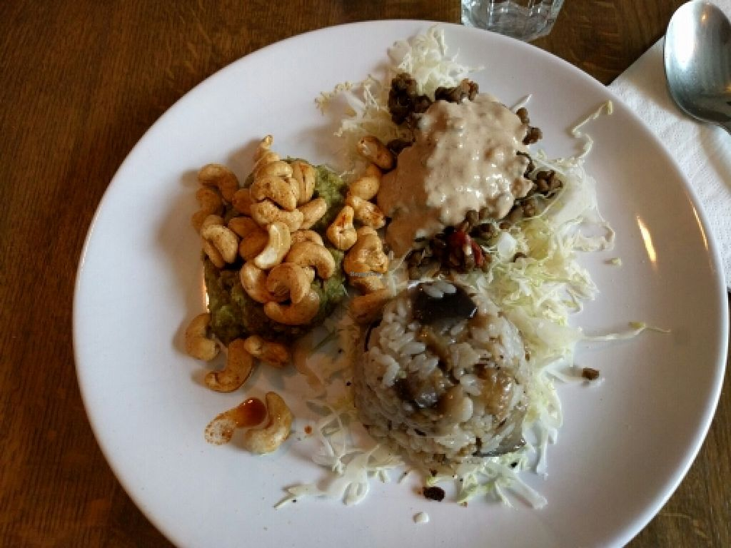 """Photo of Naturabsolu  by <a href=""""/members/profile/karenr"""">karenr</a> <br/>the non-vegan option made vegan. eggplant rice, lentil w vegan cheese, spiced cashews on guacamole <br/> June 2, 2016  - <a href='/contact/abuse/image/74572/151844'>Report</a>"""