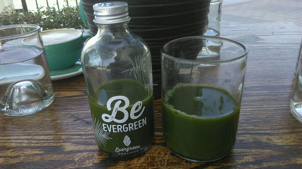 "Photo of Evergreen Organics  by <a href=""/members/profile/TrevorS"">TrevorS</a> <br/>Smoothie <br/> March 13, 2018  - <a href='/contact/abuse/image/74739/370279'>Report</a>"