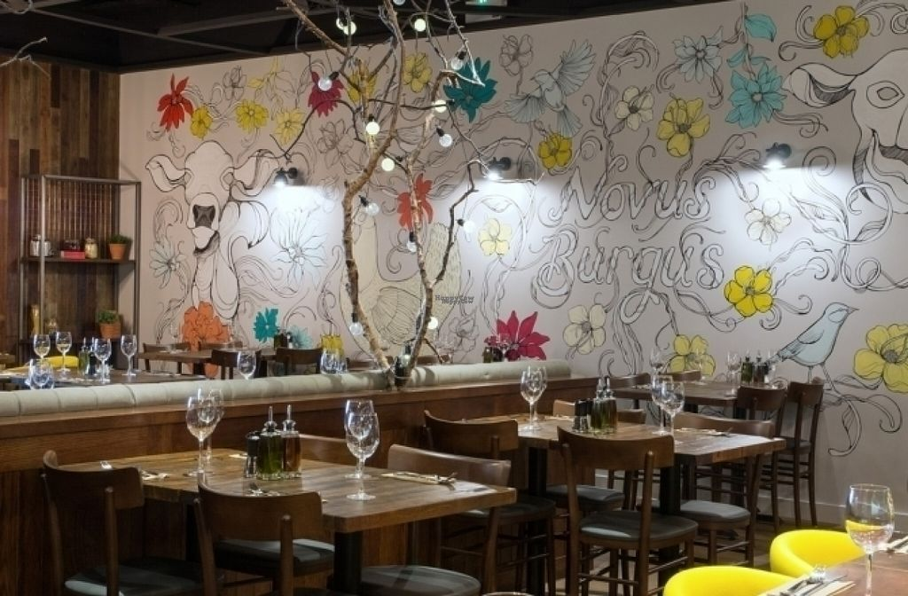 """Photo of Zizzi  by <a href=""""/members/profile/Meaks"""">Meaks</a> <br/>Zizzi <br/> August 18, 2016  - <a href='/contact/abuse/image/74793/169634'>Report</a>"""