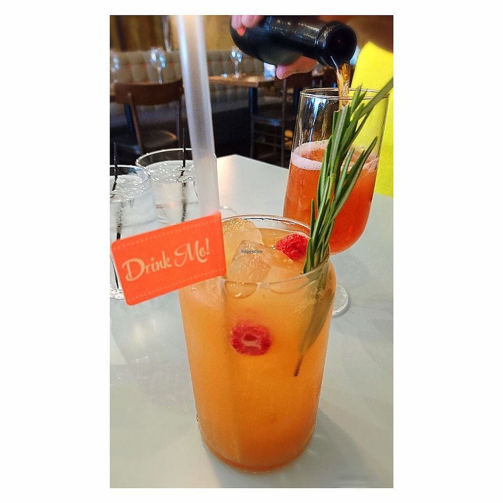 """Photo of Zizzi  by <a href=""""/members/profile/Fay84Vegan"""">Fay84Vegan</a> <br/>Fruit Cocktails  <br/> August 4, 2017  - <a href='/contact/abuse/image/74793/288436'>Report</a>"""