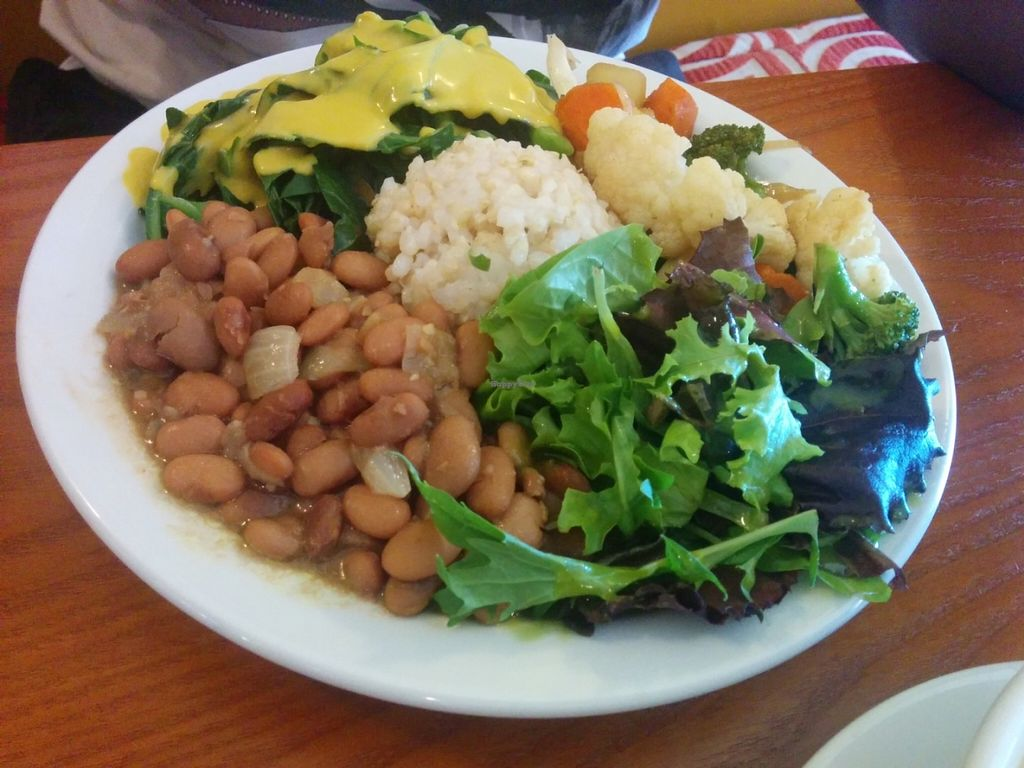 """Photo of Shangri-La Vegan - Telegraph  by <a href=""""/members/profile/MizzB"""">MizzB</a> <br/>Full plate; mixed salad with basil lemon agave dressing, short grain brown rice, pinto beans with onion and garlic, collard greens with shiitake squash sauce, sautéed cauliflower, broccoli, carrots, zucchini.  <br/> June 10, 2016  - <a href='/contact/abuse/image/74865/153235'>Report</a>"""