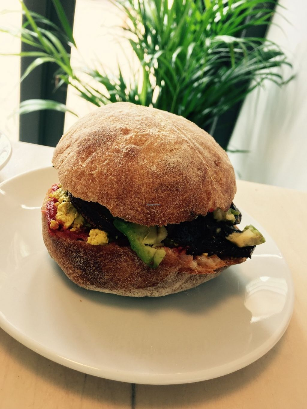"""Photo of The Plant Room Coffee  by <a href=""""/members/profile/Nickysr"""">Nickysr</a> <br/>Scrambled tofu, smoked mushroom and avocado roll <br/> June 11, 2016  - <a href='/contact/abuse/image/74956/153528'>Report</a>"""