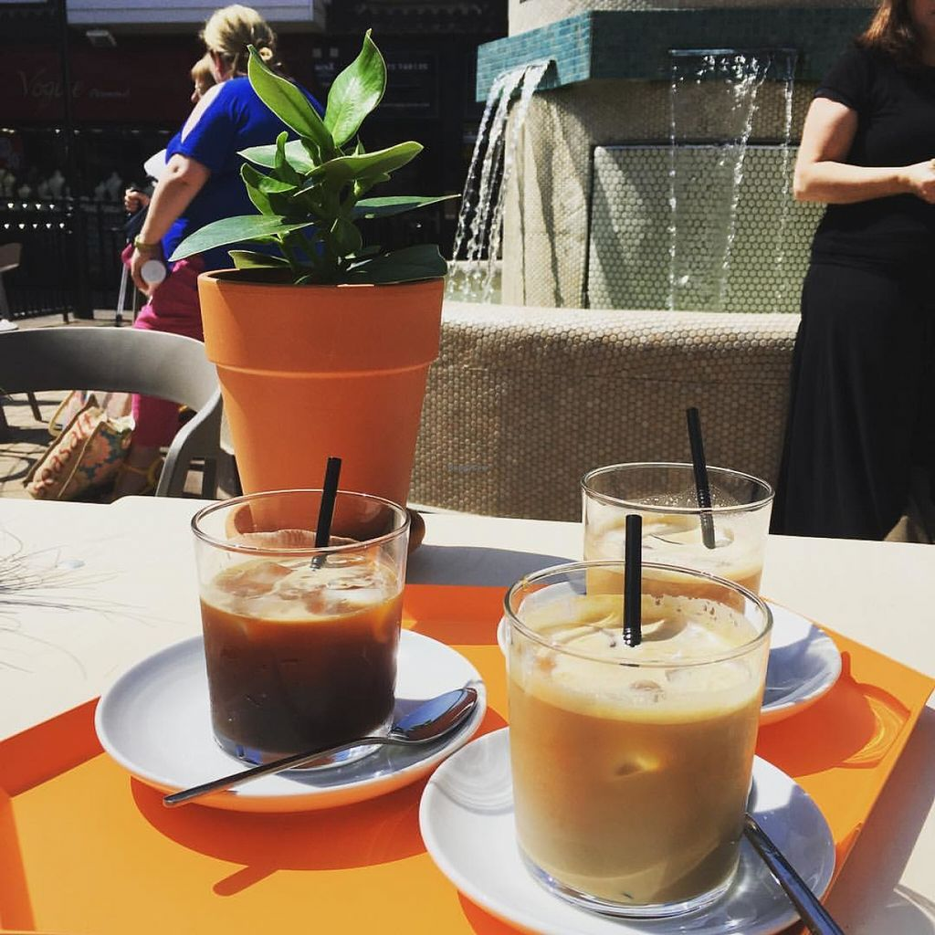 """Photo of The Plant Room Coffee  by <a href=""""/members/profile/Nickysr"""">Nickysr</a> <br/>Iced coffees <br/> June 11, 2016  - <a href='/contact/abuse/image/74956/153530'>Report</a>"""