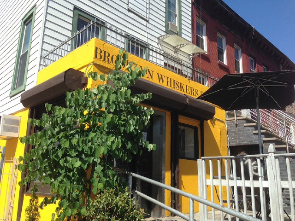"""Photo of Brooklyn Whiskers - Bushwick  by <a href=""""/members/profile/jdfunks"""">jdfunks</a> <br/>storefront  <br/> June 19, 2016  - <a href='/contact/abuse/image/74976/154905'>Report</a>"""