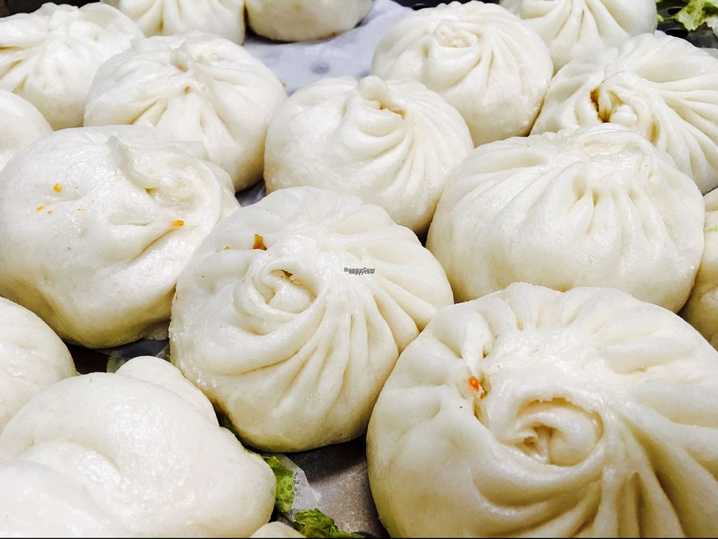 """Photo of Superoll  by <a href=""""/members/profile/Superoll"""">Superoll</a> <br/>Handmade Cabbage Buns <br/> September 23, 2016  - <a href='/contact/abuse/image/75054/177522'>Report</a>"""