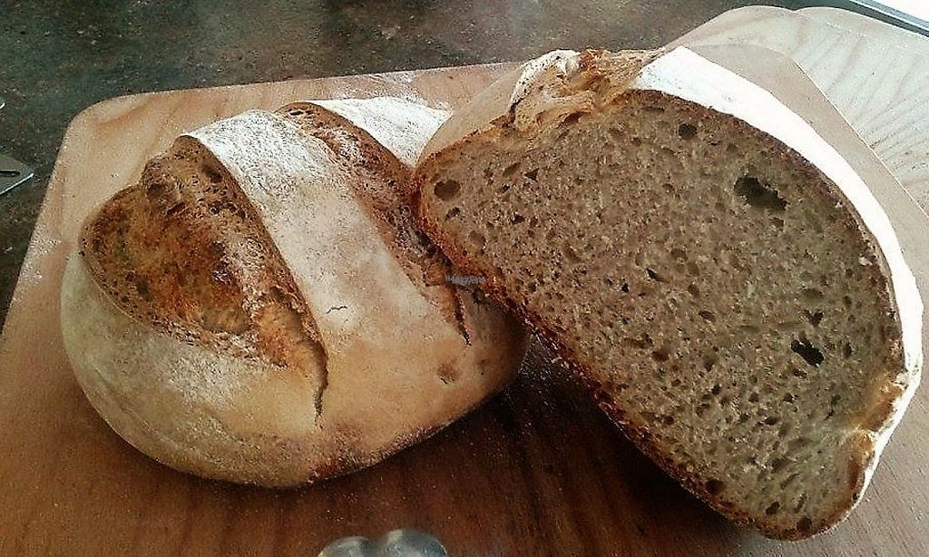 """Photo of Pane Antico  by <a href=""""/members/profile/community"""">community</a> <br/>fresh loaves  <br/> March 12, 2017  - <a href='/contact/abuse/image/75105/235334'>Report</a>"""