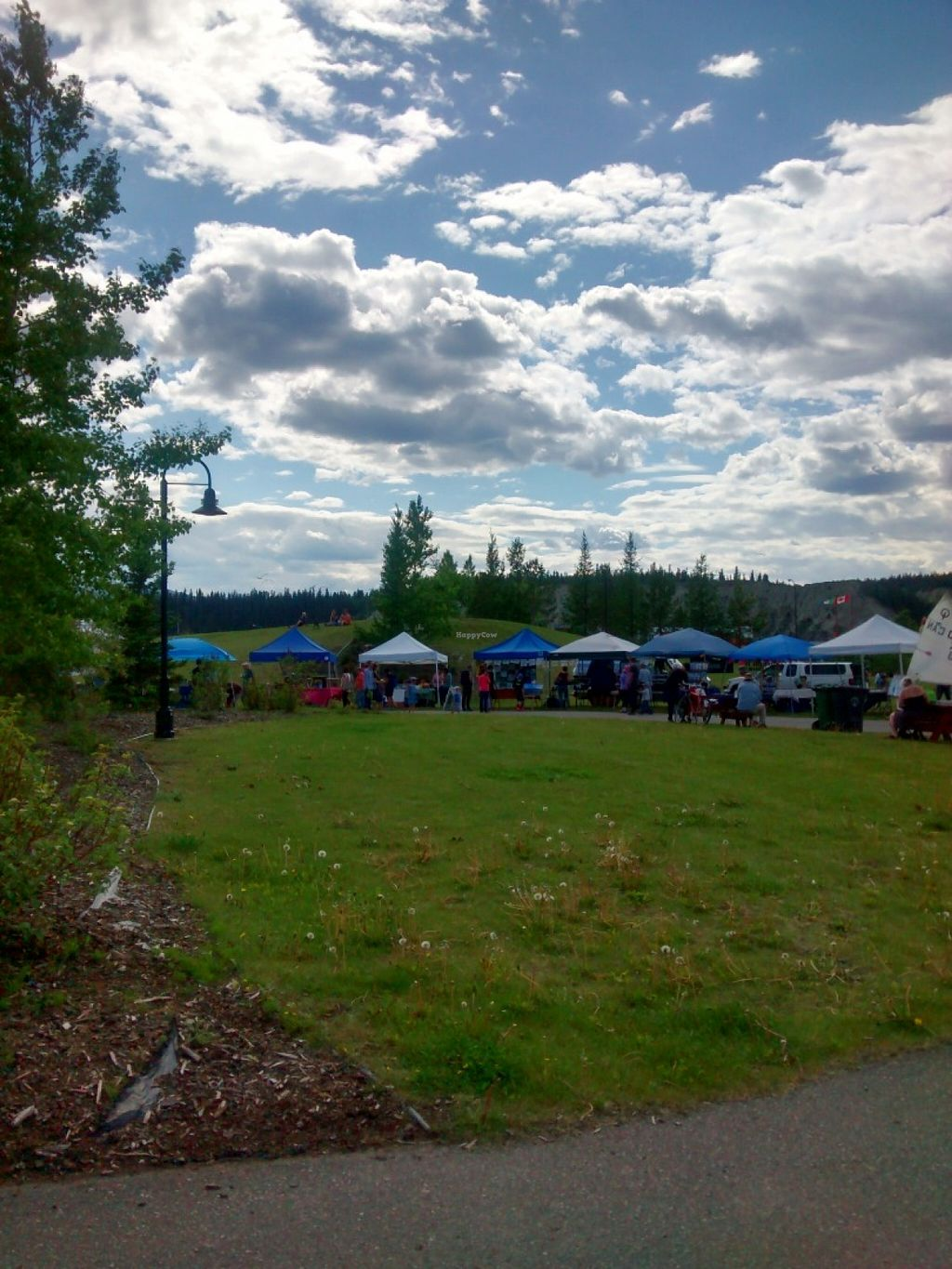 "Photo of Fireweed Community Market   by <a href=""/members/profile/QuothTheRaven"">QuothTheRaven</a> <br/>Market <br/> June 17, 2016  - <a href='/contact/abuse/image/75106/154383'>Report</a>"