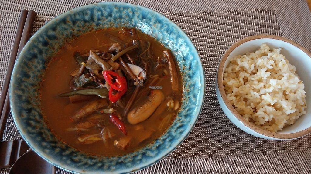 """Photo of Vegenarang  by <a href=""""/members/profile/Drabbitgon"""">Drabbitgon</a> <br/>Spicy soup with mixed vegetables.  <br/> April 15, 2017  - <a href='/contact/abuse/image/75142/248087'>Report</a>"""