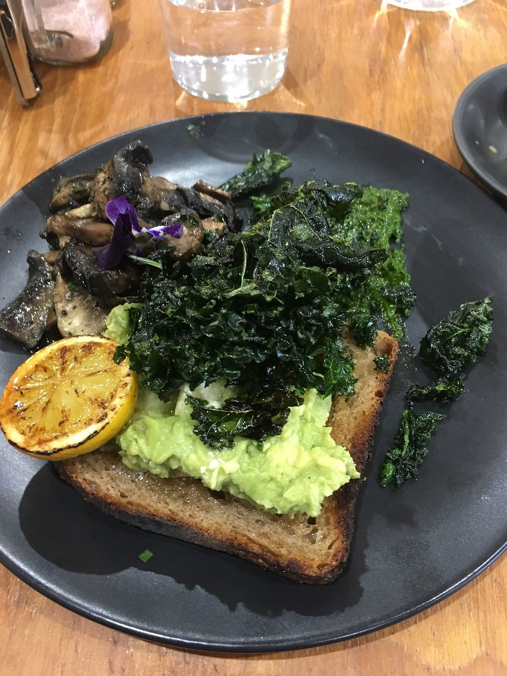 """Photo of Onyx by Chrissy's Organics  by <a href=""""/members/profile/Lucindabowden"""">Lucindabowden</a> <br/>Smashed avo toast yum! <br/> July 14, 2017  - <a href='/contact/abuse/image/75152/280066'>Report</a>"""