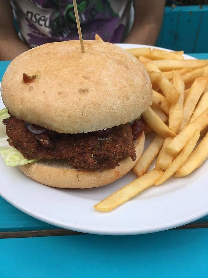 """Photo of Fare Well  by <a href=""""/members/profile/shafess"""">shafess</a> <br/>Barbecue Seitan <br/> July 11, 2017  - <a href='/contact/abuse/image/75173/279270'>Report</a>"""