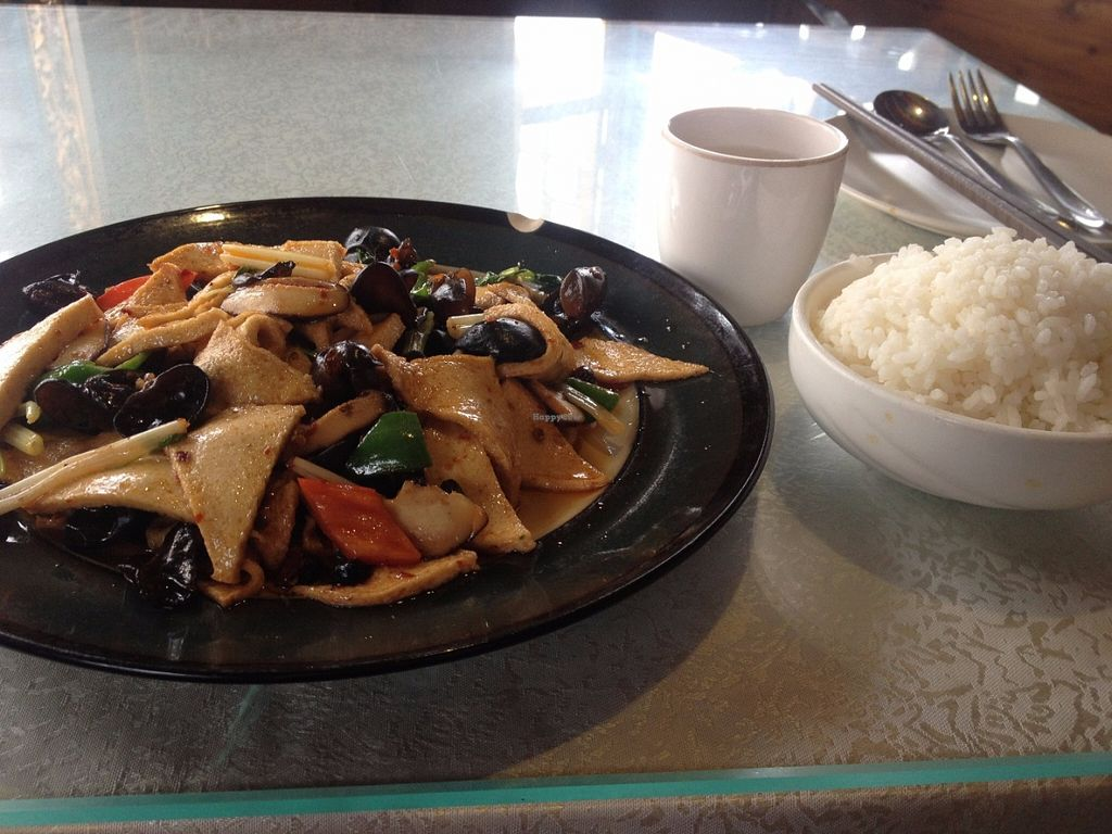 """Photo of Zong Lion Tibetan Vegetarian  by <a href=""""/members/profile/vegan_ryan"""">vegan_ryan</a> <br/>Tofu with mushrooms & vegetables <br/> June 17, 2016  - <a href='/contact/abuse/image/75193/154446'>Report</a>"""