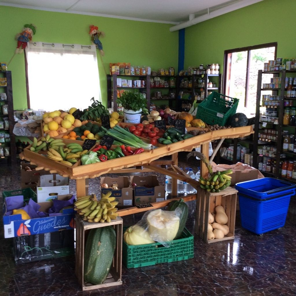 """Photo of Biotienda  by <a href=""""/members/profile/trinitybourne"""">trinitybourne</a> <br/>Lots of local organic veggies and fruits <br/> June 17, 2016  - <a href='/contact/abuse/image/75218/154449'>Report</a>"""