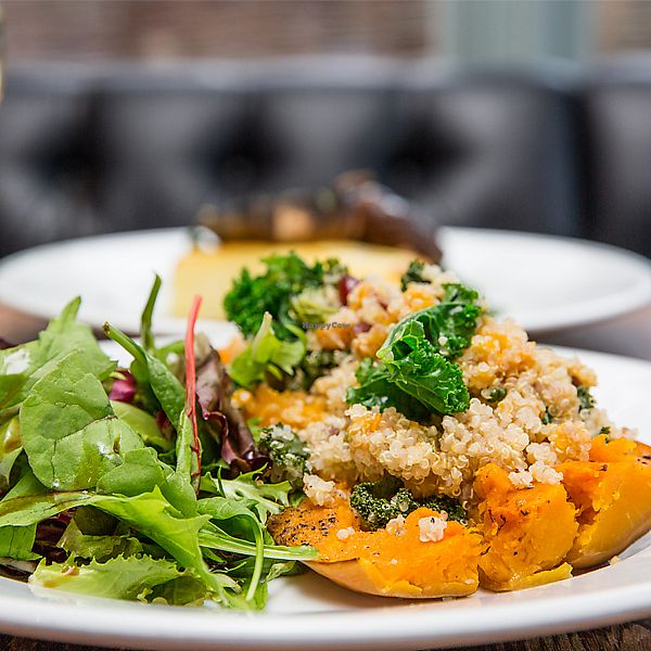 """Photo of The White Horse  by <a href=""""/members/profile/EvergreenCat"""">EvergreenCat</a> <br/>Butternut Squash with quinoa salad  <br/> November 30, 2017  - <a href='/contact/abuse/image/75234/330789'>Report</a>"""