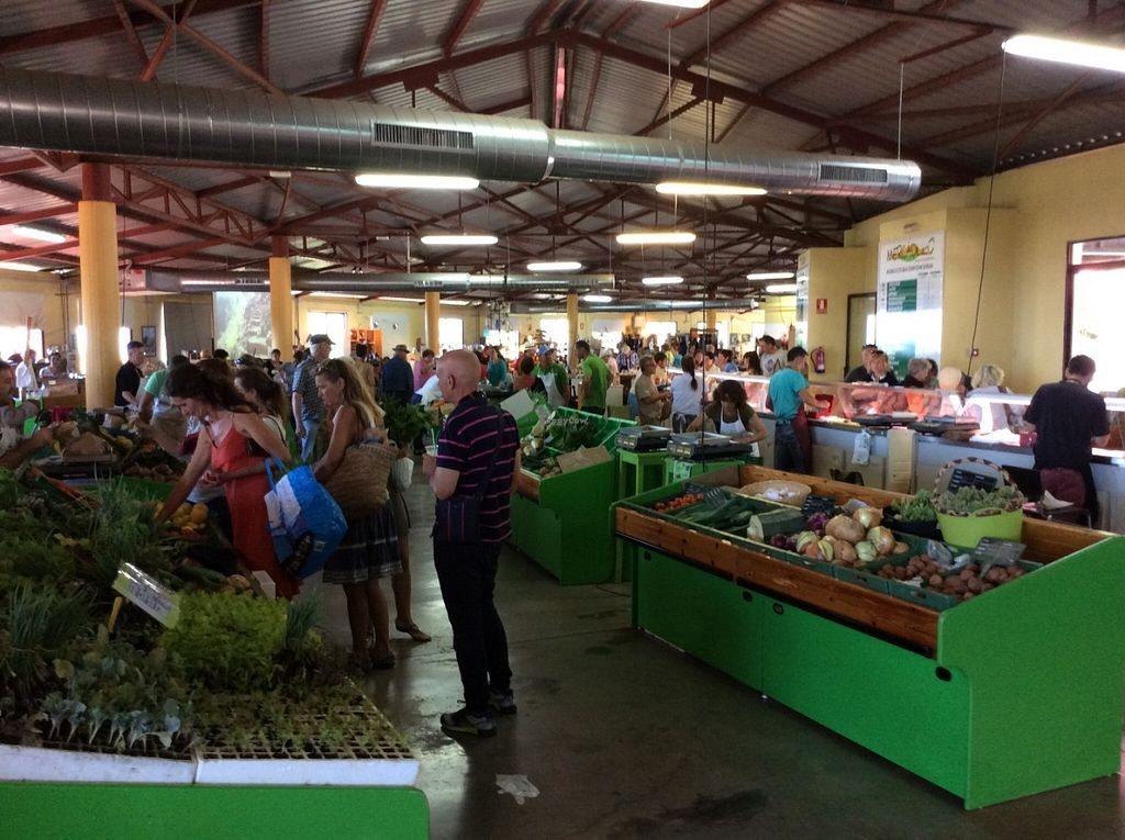 """Photo of Mercadillo Puntagorda  by <a href=""""/members/profile/trinitybourne"""">trinitybourne</a> <br/>The market is indoors, great protection from the sun.  <br/> June 18, 2016  - <a href='/contact/abuse/image/75247/154670'>Report</a>"""