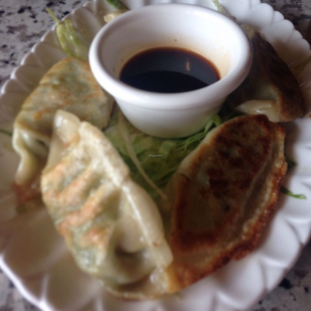 """Photo of Yuan Su Vegetarian  by <a href=""""/members/profile/StephanieHarmon"""">StephanieHarmon</a> <br/>Vegan potstickers <br/> July 21, 2016  - <a href='/contact/abuse/image/75258/161403'>Report</a>"""