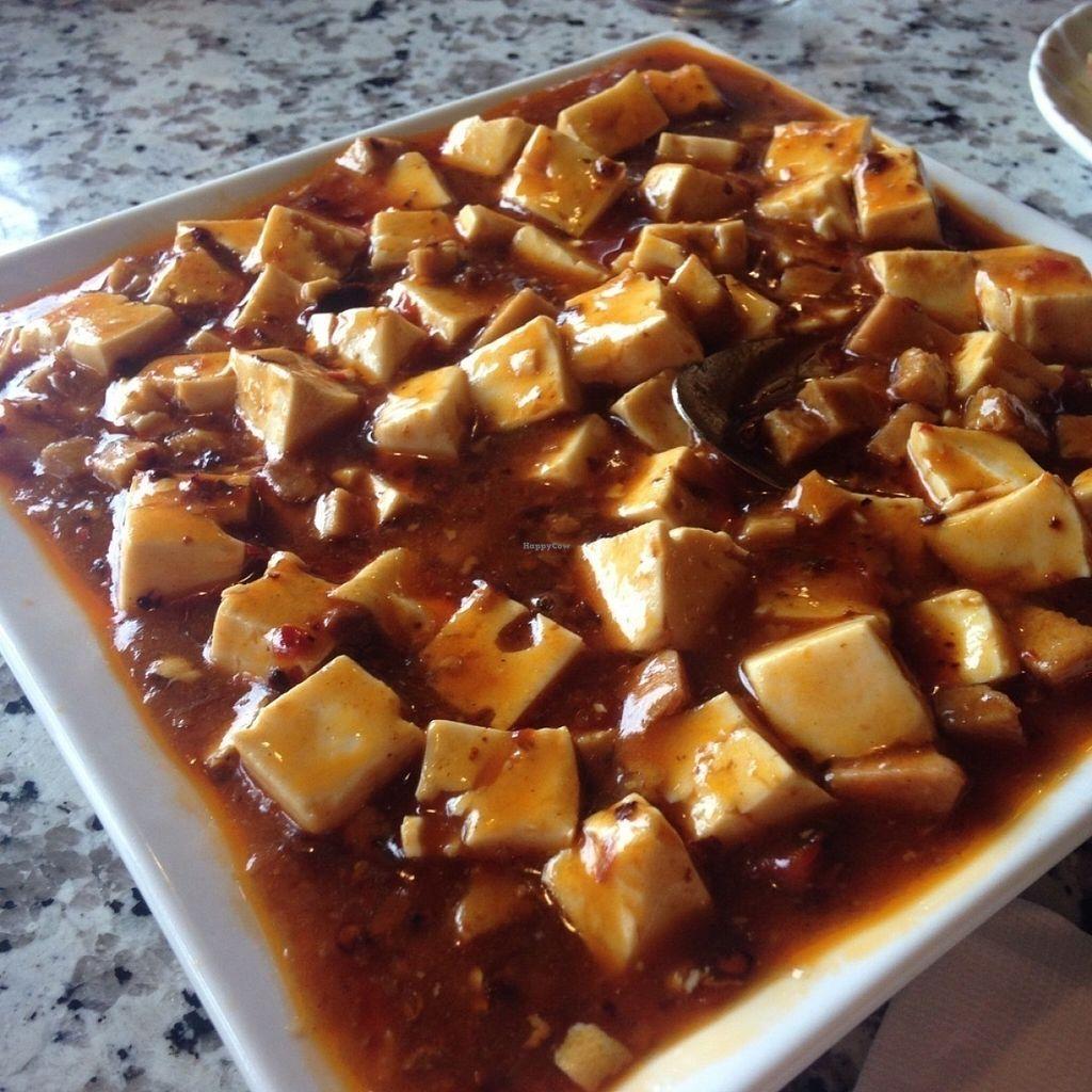 "Photo of Yuan Su Vegetarian  by <a href=""/members/profile/StephanieHarmon"">StephanieHarmon</a> <br/>Curry tofu <br/> July 21, 2016  - <a href='/contact/abuse/image/75258/161404'>Report</a>"
