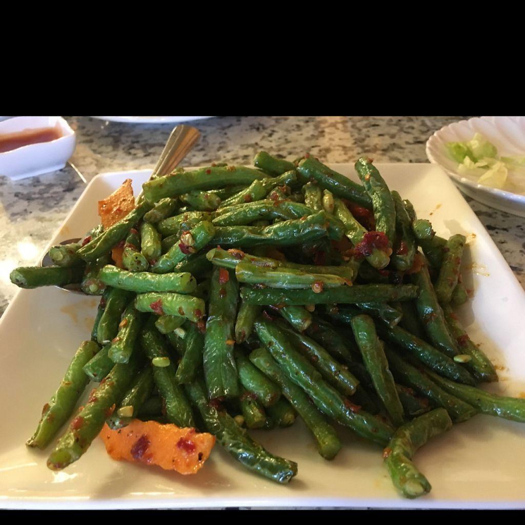 "Photo of Yuan Su Vegetarian  by <a href=""/members/profile/Confetta"">Confetta</a> <br/>green Bean dish <br/> March 19, 2017  - <a href='/contact/abuse/image/75258/238173'>Report</a>"