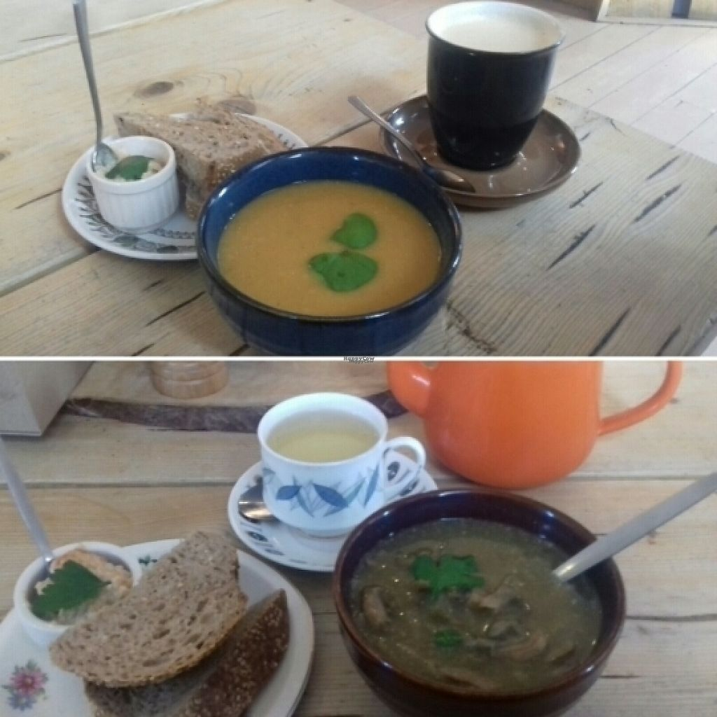 """Photo of Velocity Cafe  by <a href=""""/members/profile/Rebca_damson"""">Rebca_damson</a> <br/>soup, tea and coffee <br/> March 9, 2017  - <a href='/contact/abuse/image/75340/234583'>Report</a>"""
